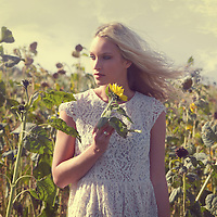 Young woman standing in a field of sunflowers