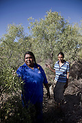 Brunette Downs Cattle Station is situated on the Barkley tablelands in Australia's Northern Territory. One of Australia's largest cattle stations..Joy Priest and Donna Green looking for traditional foods at the aboriginal communinity near Brunette station.