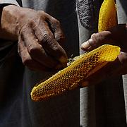 En pays Aït Bamraan sur les pas des maîtres des abeilles