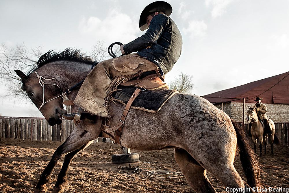 Cowboy Riding Bucking Colt, Texas