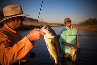 FLY ANGLERS COMPARING