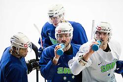 David Rodman, Ziga Pesut, Blaz Gregorc during practice session of Slovenian Men's National Ice Hockey Team before EIHC tournament 2015 in Wien, on February 3, 2015 in Ledna dvorana, Bled, Slovenia. Photo by Vid Ponikvar / Sportida