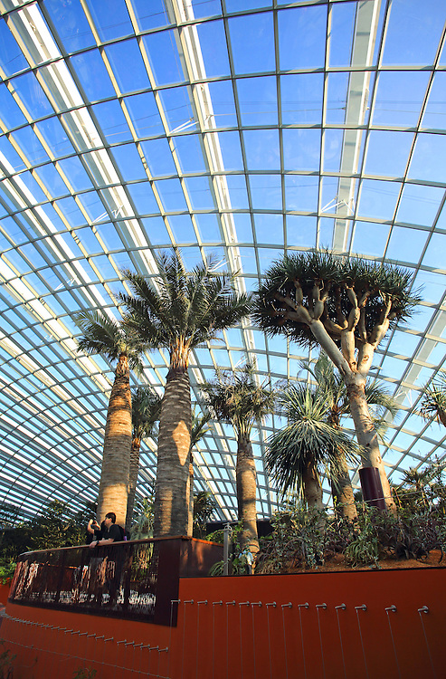 Flower Dome, the cool-dry conservatory at Gardens By The Bay in Singapore.
