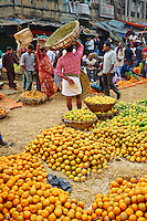Inde, Bengale-Occidental, Kolkata, Calcutta, marche aux fruits // India, West Bengal, Kolkata, Calcutta, fruit market