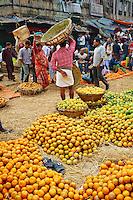 Inde, Bengale-Occidental, Kolkata, Calcutta, marche aux fruits // India, West Bengal, Kolkata, Calcutta, fruit market
