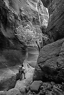 Backpacker in slot canyon, Orderville Canyon,  Zion National Park. MR, © 1999 David A. Ponton