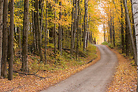 Country road in autumn Vermont USA