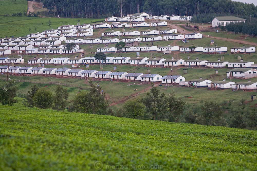 A tea plantation, near Kericho, Kenya, owned by Unilever. Owned by Unilever. Workers live in company housing and make $3 to $9 US per day, depending on how much tea they pick. They are paid by the kilo. The young tea leaves  are picked every two weeks.