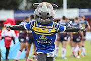 The Leeds Rhinos Mascot prior to the Betfred Super League match between Hull Kingston Rovers and Leeds Rhinos at the Lightstream Stadium, Hull, United Kingdom on 29 April 2018. Picture by Mick Atkins.