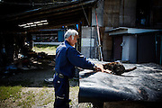 Tomioka, May 2 2012 - Naoto Matsumura, 52, refuses to leave the Fukushima nuclear evacuation zone. Since April 2011, he lives alone in his house without electrcicity and takes care of pets in the area.
