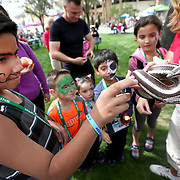 March 1, 2014, Palm Springs, California: <br /> Kids pet a snake at the petting zoo station during Kids Day at the Indian Wells Tennis Garden sponsored by the Coachella Valley National Junior Tennis and Learning Network.<br /> (Photo by Billie Weiss/BNP Paribas Open)