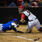02/15/2018 - Softbal v Kentucky
