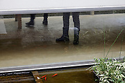 fishpond with goldfish outside a gallery