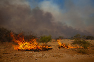 The Legacy brush fire outside of Big Spring Texas fueled by wind spreading on the morning of September 29, 20011.The Legacy first burned for two days and destroyed 5000 acres before it was contain   The Drought in Texas will have long term environmental and finical impact.
