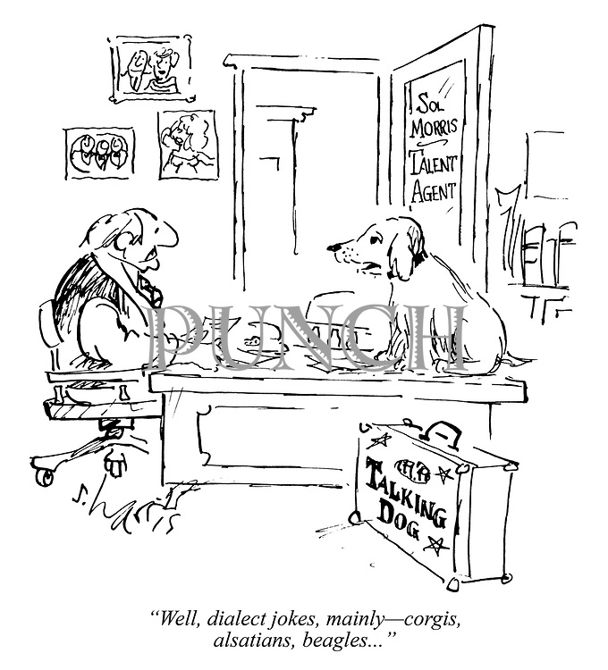 """Well, dialect jokes, mainly—corgis, alsatians, beagles..."""