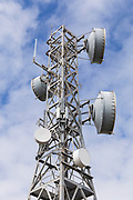 Microwave radio link relay dish antenna on tower