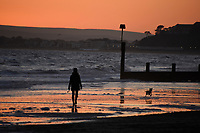 Woman and a dog on the beach at sunset