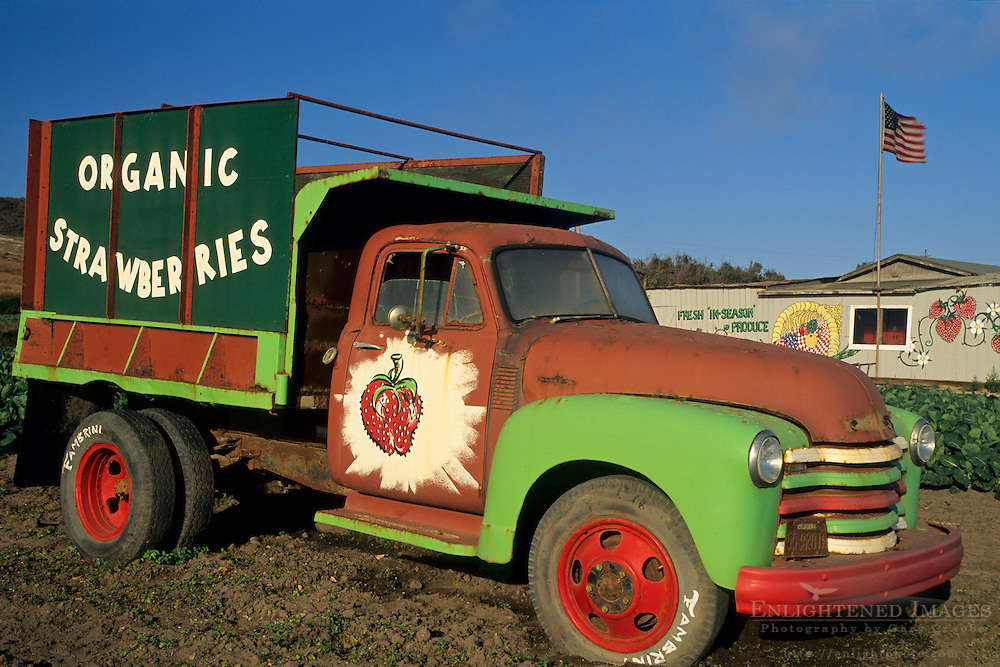 Old produce truck in strawberry fields, Fambrini's Produce Stand, Davenport Santa Cruz County coast, California