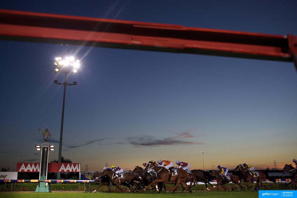 Night horse racing at Canterbury race course, Sydney, Australia,  02 December 2009. Photo Tim Clayton.