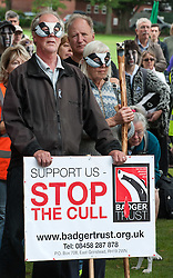 © Licensed to London News Pictures. 15/08/2015. Taunton, Somerset, UK. March and rally in protest against the badger cull, which is expected to resume in Somerset and Gloucestershire within the next few weeks.  The Government has licensed the culling of badgers by shooting to try and stop the spread of bovine tuberculosis, but campaigners dispute the Government and farming industry view of bovine TB transmission from badgers to cows, and the efficacy and humaneness of shooting badgers.  There are rumours that the cull may be extended to parts of Dorset and Devon.  Photo credit : Simon Chapman/LNP