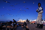 Fishing harbour at dawn, Essaouira