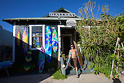 Maui, Lahaina. Artist painted surfboards at The Old Cane House Gallery.