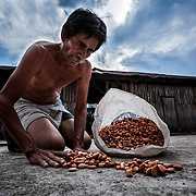 The object of the drying process is to de-activate the enzymes and reduce the moisture in the beans to an optimal 7-8%.  This is necessary for handling and storage as if the beans are too dry they become brittle and if too moist they can become mouldy.  Francisco Sarabia community. Mexico.
