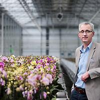 Nederland, Markapelle, 3 juni 2016<br /> de grootste orchideenkwekerij ter wereld (familiebedrijf van 5 broers waaronder de CEO, CFO komt van buiten.<br /> Op de foto: Martin Smaal CEO<br /> <br /> <br /> <br /> Foto: Jean-Pierre Jans