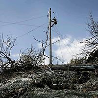 Griekenland.Peloponnesos.28 augustus 2007..Verschroeide aarde als gevolg van de bosbranden in de Peleponesos zo'n 40 km buiten Olympia...Nadat de brand geblust worden herstelwerkzaamheden verricht de electriciteitspalen.