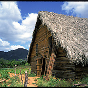 A tobacco drying hut in the Piñar del Rio region of Cuba.