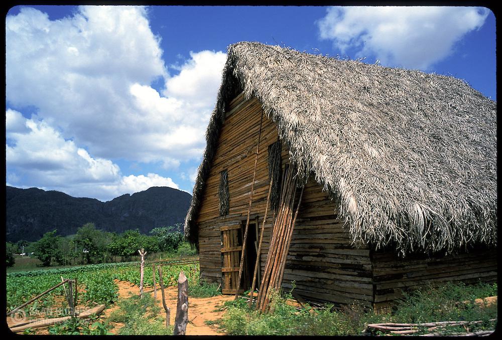 A tobacco drying hut in the Piñar del Rio region of Cuba.