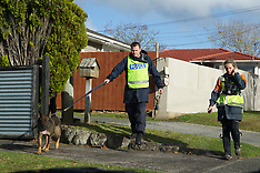 Auckland - Birkdale , Missing Woman, Blesilda Gotingco
