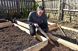 Life in coronavirus lockdown in the UK April 2020. Man digs up his back garden to make raised vegetable beds.  Model released.