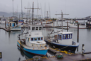 Fishing Boats, Harbor Crescent, California