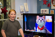 Wantagh, New York, USA. 7th February 2016. MIKE DAY, 13, of Wantagh, watches kittens play football in Hallmark Channel Kitten Bowl III, at Last Hope Animal Rescue's Open House, where the adoption center's volunteers, including Mike, and visitors cheer on their team, the Last Hope Lions. Over 100 adoptable kittens from Last Hope Inc and North Shore Animal League of America participated in the taped games, and the Home and Family Felines won the 2016 championship, which first aired the day of Super Bowl 50.