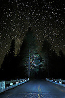 Night Sky and Illuminated Bridge, on the banks of the Metolius River<br /> <br /> Shot in Oregon, USA