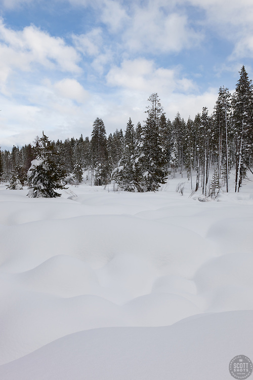 """Snowy Alder Creek 1"" - These snowy mounds were photographed along Alder Creek in the Tahoe Donner area of Truckee, CA."