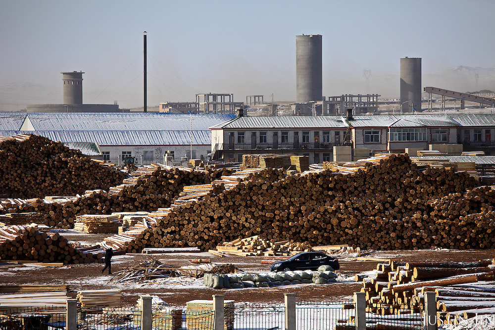 Russian timber is processed in the Chinese boomtown of Manzhouli, near the Russian-Chinese border. Much of the forests in Siberia and the Russian Far East is destroyed to feed the construction boom of its resource-hungry Asian neighbour.
