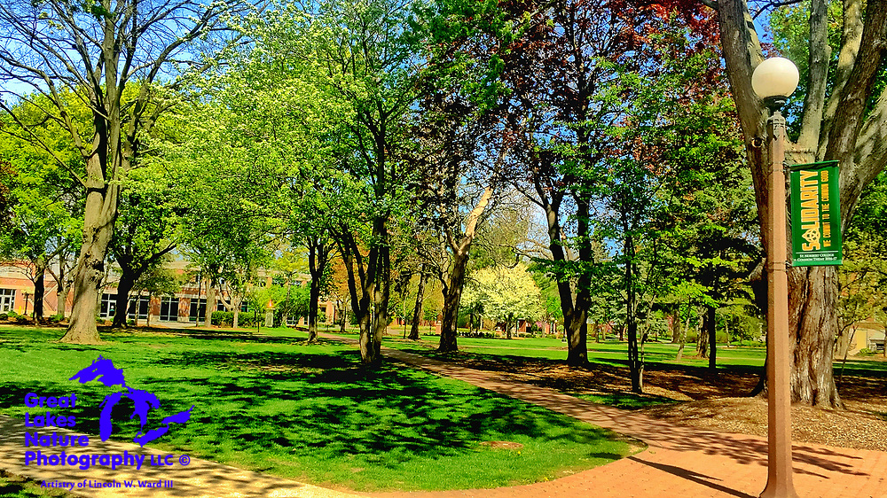 One of several images captured at the campus of St. Norbert College, in De Pere, WI, on May 13, 2017.