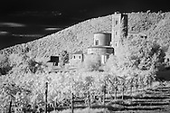 Infra Red Black & White view of vineyard and St. Antimo Abbey near Montalcino, Italy, Tuscany
