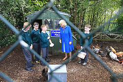 © Licensed to London News Pictures. 25/05/2016. Britain's HRH Duchess of Cornwall Camilla helps the children feed chickens at Cluckingham Palace during a school visit to Ballyraine National School in Letterkenny, County Donegal, Ireland. Prince Charles and his wife is on the final day of a 3 trip to Northern Ireland and the Irish Republic.  Photo credit: Paul McErlane/LNP