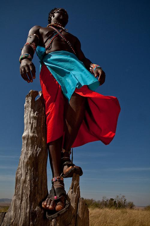 Sammy, Maasai Mara