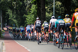 Peloton during 2019 Dutch National Road Race Championships Men Elite, Ede, The Netherlands, 30 June 2019, Photo by Pim Nijland / PelotonPhotos.com | All photos usage must carry mandatory copyright credit (Peloton Photos | Pim Nijland)