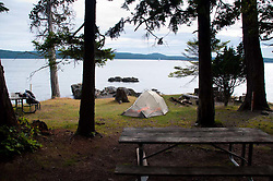 Tent at Cascadia Marine Trail Campsite, Jones Island, San Juan Islands, Washington, US