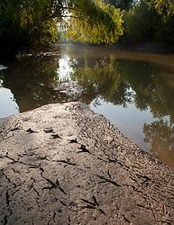 bird tracks on shoal in river.