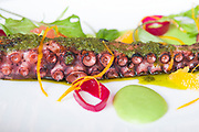 100 Dishes 2017<br /> <br /> Wood Grilled Octopus at St. Cecilia
