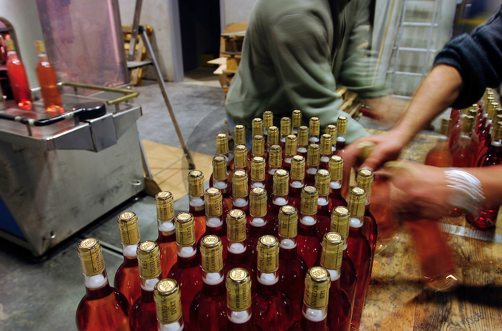 20/03/06 - ESTAING - AVEYRON - FRANCE - Cooperative viticole du vignoble D ESTAING - Photo Jerome CHABANNE