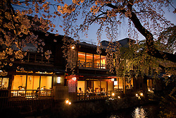 Asia, Japan, Honshu island, Kyoto, Gion quarter, restaurants along canal lined with cherry blossom trees at dusk