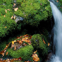 Greene Falls, Baxter S.P., ME. Fall in the Northern Forest.
