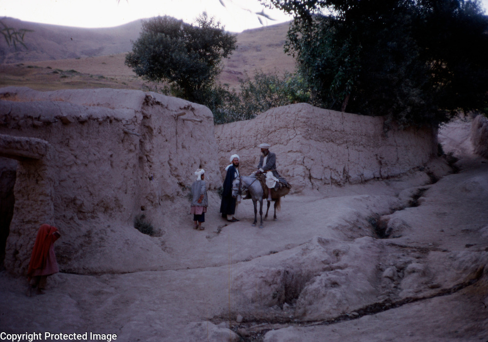 1966<br />
